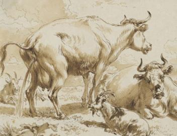 vache qui pisse gravure