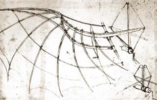 L. de Vinci, aile